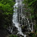 Mingo Falls -  Great Smoky Mts.
