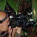 Farhan (aka myrmician) photographing Heteropteryx dilatata by Arthur Anker