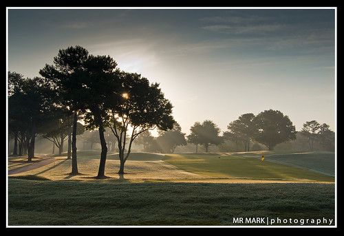 morning trees green fog sunrise ga golf georgia championship highlands course greens link pga links aac 2011 johnscreek atlantaathleticclub