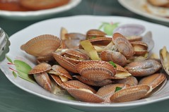 Kidney clams