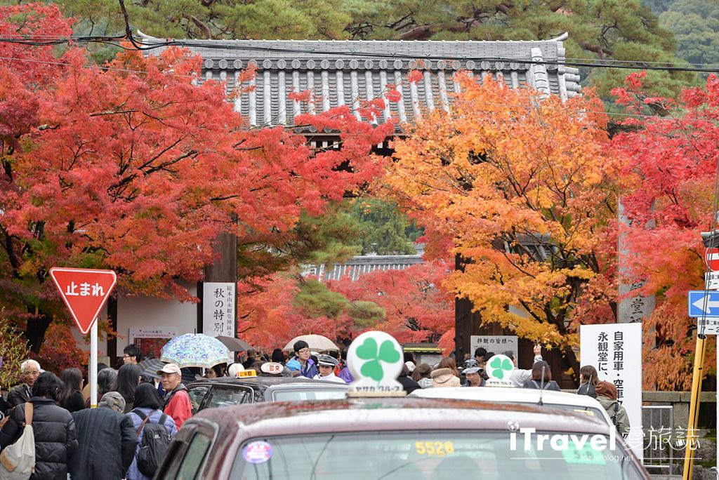 京都赏枫景点 永观堂 (3)