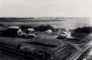 Farm 1954