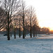 Jan 2nd - Snow in Phoenix Park by whykay