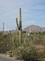 Papago Park - Phoenix, Arizona