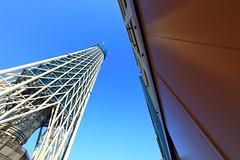 Tokyo Sky Tree under construction 2010-01-15 / 東京スカイツリー建設中(けんせつちゅう)