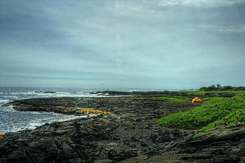 ocean beach blacksand hawaii lava turtles