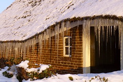 barn, hut, winter, wood, snow, house, sugar house, home,