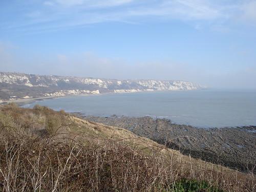 Folkestone cliffs