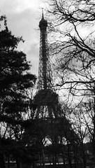 Paris, Winter 2010.