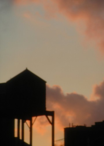 nyc landscape rooftops watertowers