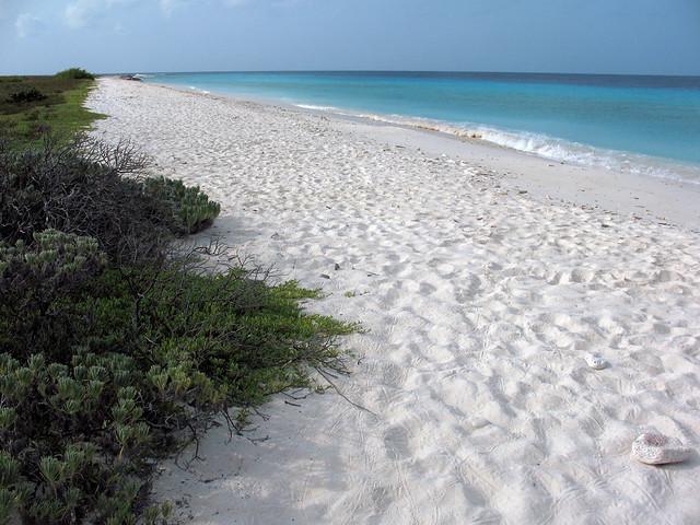 جزيرة كوراساو - الكاريبى