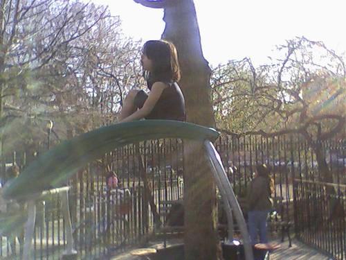 Playground Perch