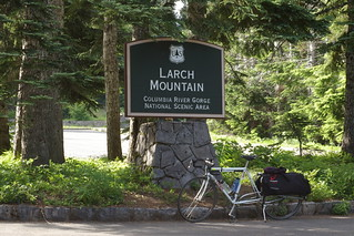Larchacycle