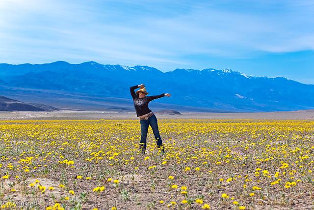 Death Valley 2010 Vacation Flickr Photo Sharing