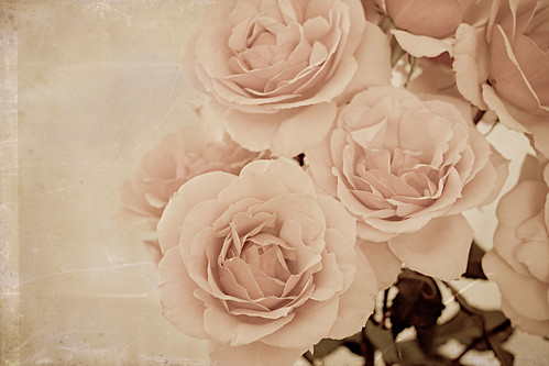 Antiqued Roses