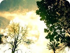 paisajes de naturaleza