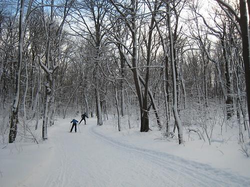 Skate skiing at Laurel Ridge State Park