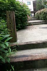 Kagurazaka Streetscape - 47