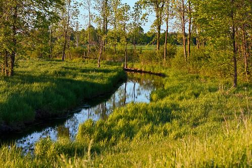 ontario rural creek jasper farm country fields dirtroad merrickville wolford irishcreek leedsandgrenville eastonscorners weedmarkroad