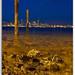 Alki Beach Long Exposure by Veevake