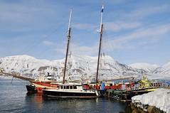 Das Schiff Noorderlicht. Skitouren Norwegen mit Schiff/Boot Spitzbergen. Foto: Birgit Gelder.