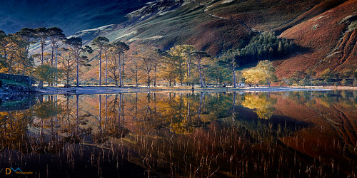 Buttermere Autumn Reflections