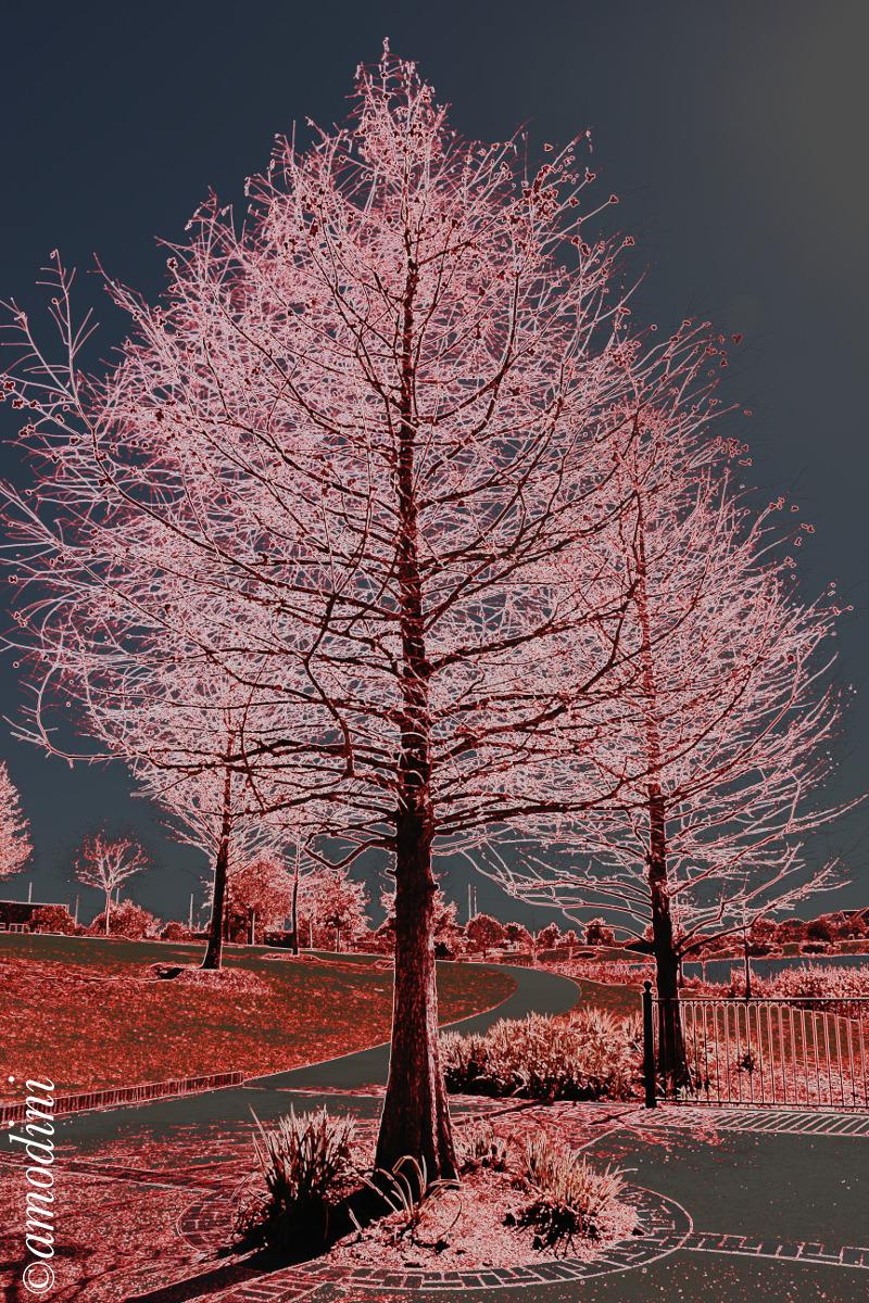 Tree in edit