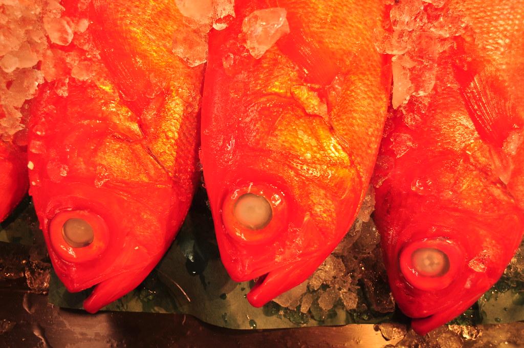 Fish in sea food market in Tsukiji