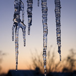 Icicle Sunset