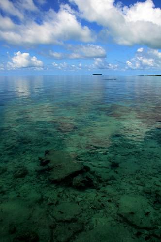 Island coral reef, Fun Island, Maldives