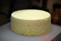 semifreddo, pecorino romano, food, cheesecake, dairy product, parmigiano-reggiano, cheese,