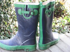 footwear, shoe, green, riding boot, boot,