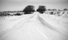 Snow 2009/2010