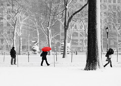 Madison Square Park Winter Storm by marc.cappelletti