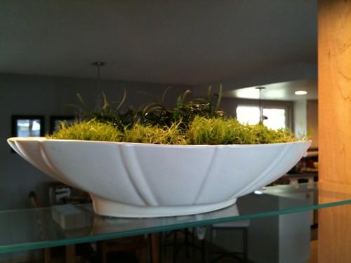 Modern Ceramic Tabletop Garden