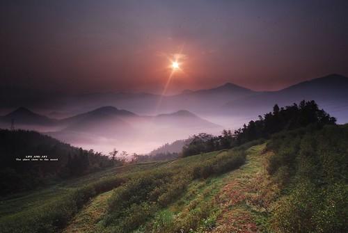 landscape photography taiwan 南投 風景 紅茶 日出 攝影 魚池 阿薩姆 茶葉改良場 台灣風景 21號布雷克玩家 賴彥岐