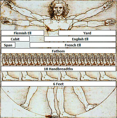 vitruvian_man_with_measurements