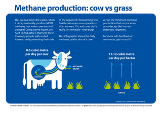 Methane production of cows vs grass
