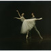 Mea Venama & Francis Sinceretti (Het Nationale Ballet)_Gallery Card. Photo Jorge Fatauros