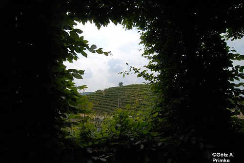 Primavera del Prosecco Prosecco_4_Cartizze_2010_001