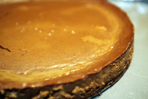 spicy pumpkin pie in a springform pan