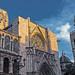 Valencia Cathedral & El Micalet (View from Plaza de la Virgin) Cross Process Effect) (Olympus OM-D EM1-II & M.Zuiko 17mm f2.8 Pancake Prime)
