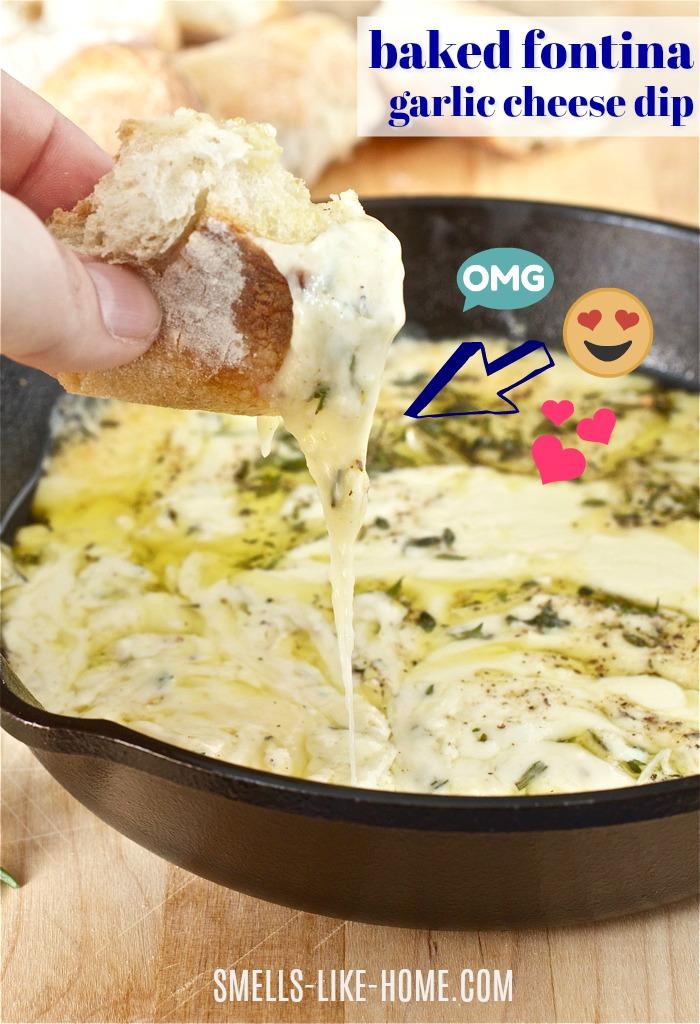 Baked Fontina Garlic Cheese Dip