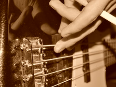 4225878983 563c7d8f76 m Bass Guitar Lessons For Newbie Bassists