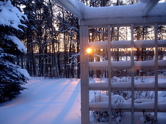 Winter in Finland, January 2010