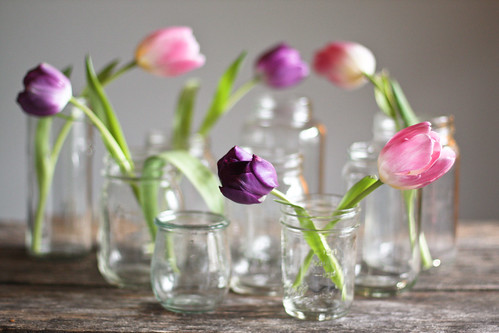 [17/365] tulips in glass