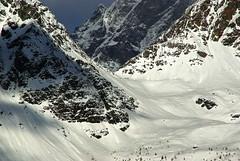 Alpinismo/scialpinismo