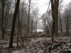 Snow in Warren    IMG_0573