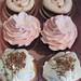 Cupcake Bridal Sampler - <span>www.cupcakebite.com</span>
