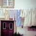 secadero